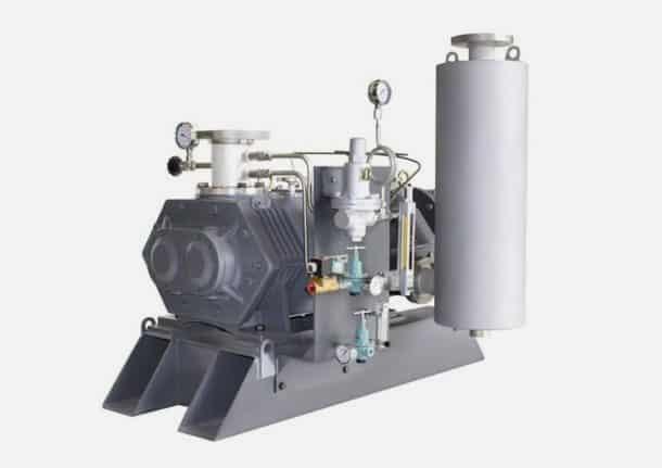 DSVP-01-610x431