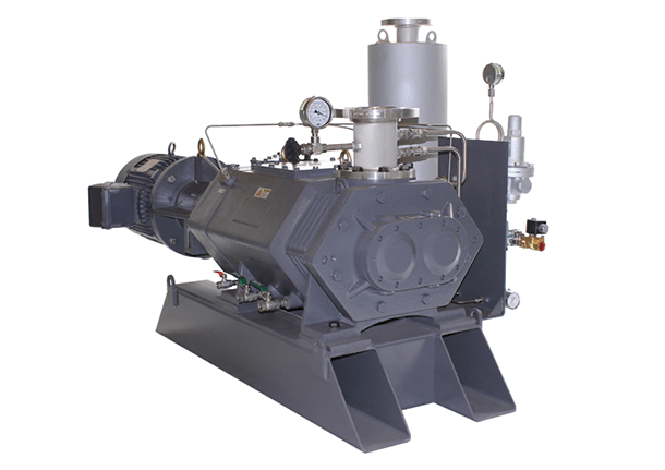 DSVP-02